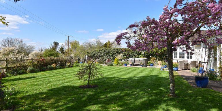 Garden 2 of 4_1600x1068